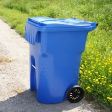 Large Outdoor Recycling & Waste Cart